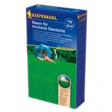 NASIONA TRAW PROFI-LINE SUNNY GREEN RASEN 10 kg KIEPENKERL
